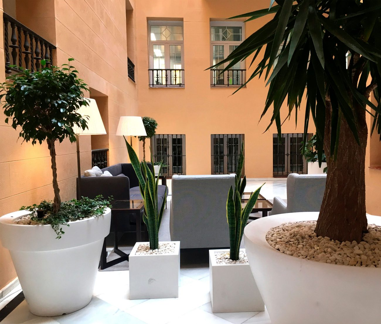 arquitectura_corporativa_diseno_interiores_biofilica_zona_espera