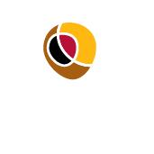 logo_premio_regional_artesania_castilla_la_mancha_2011